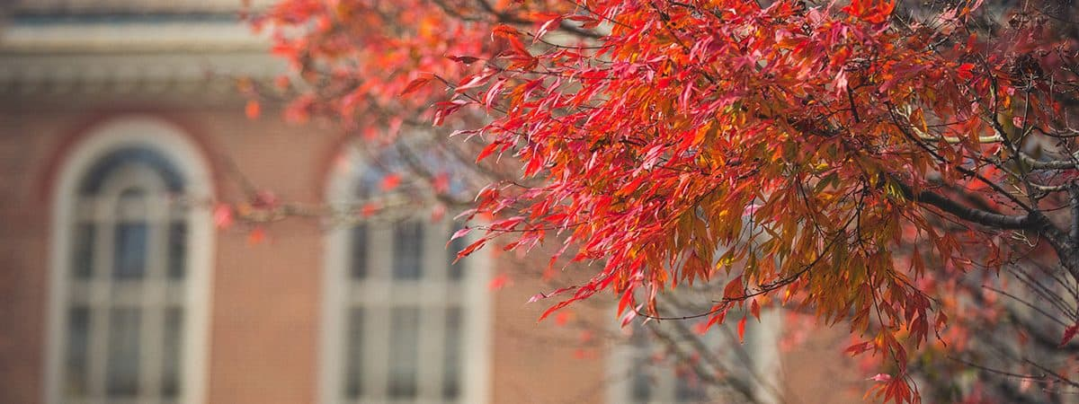 Regent University Fall