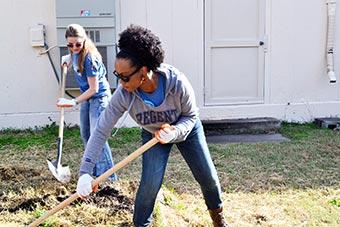 Student volunteers at work.