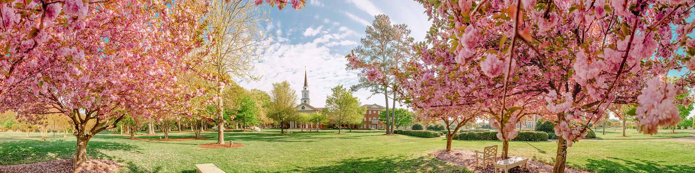 Regent University offers undergraduate and graduate degrees online and on-campus in Virginia Beach, VA 23464.